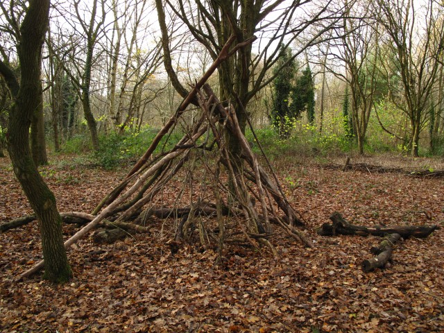 Cannon Hill park, coppice demonstration structure